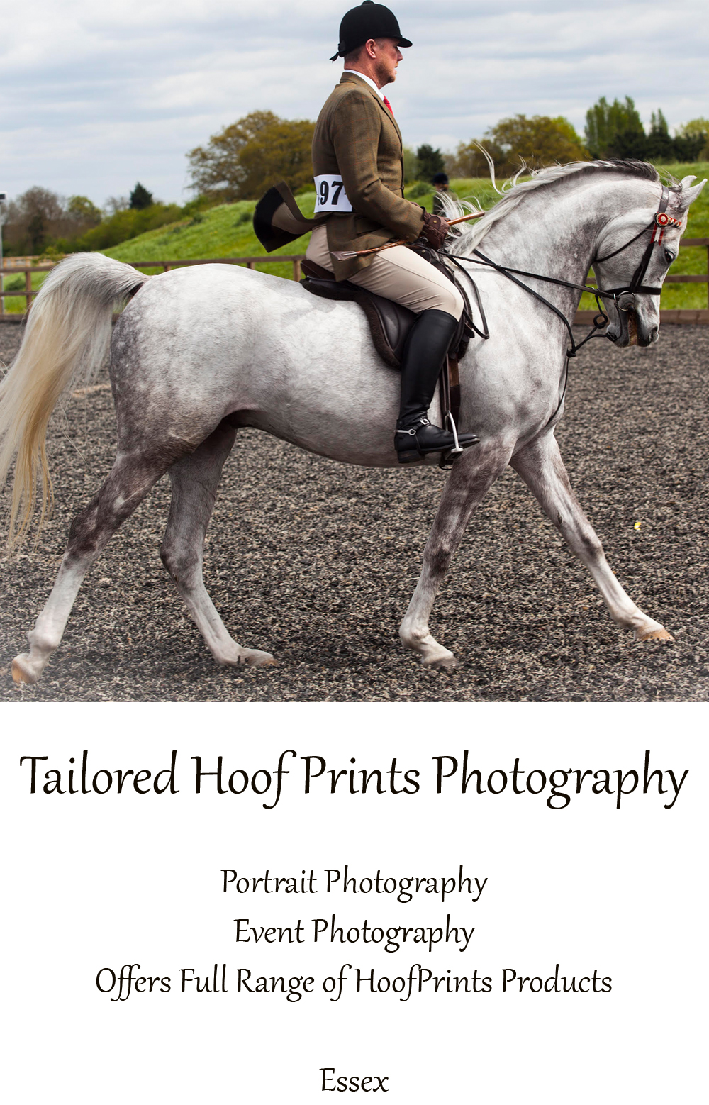 Tailored Hoof Prints Photography