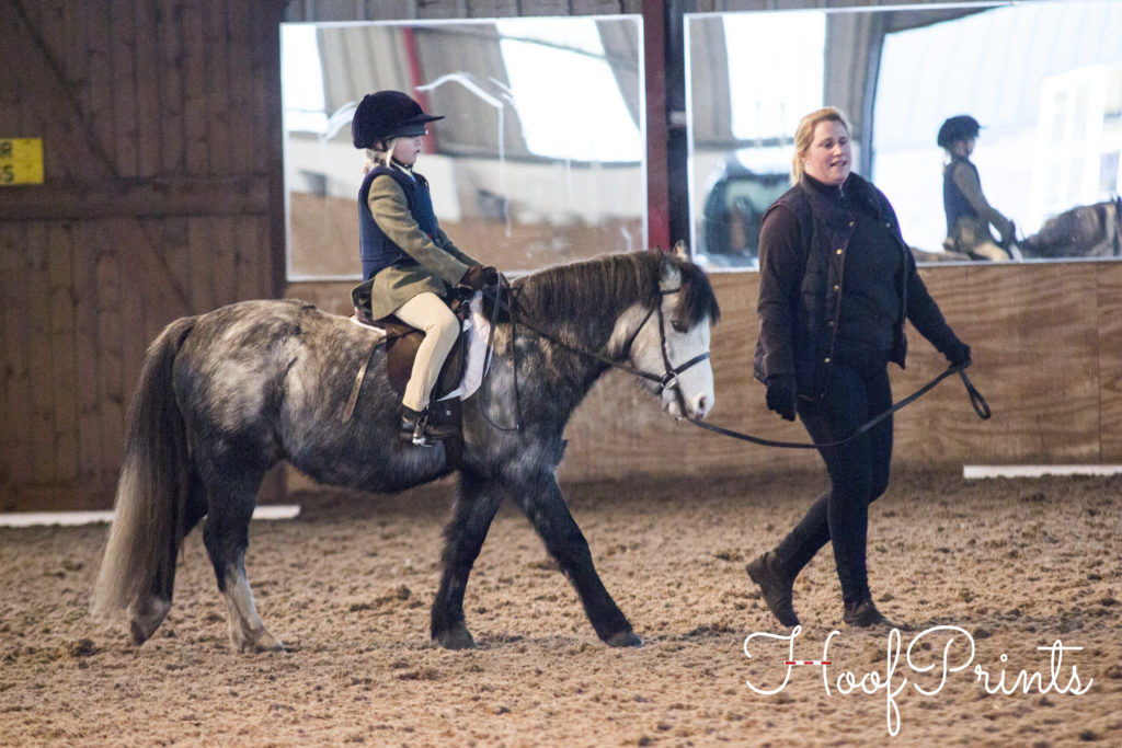 Mill Lane Dressage