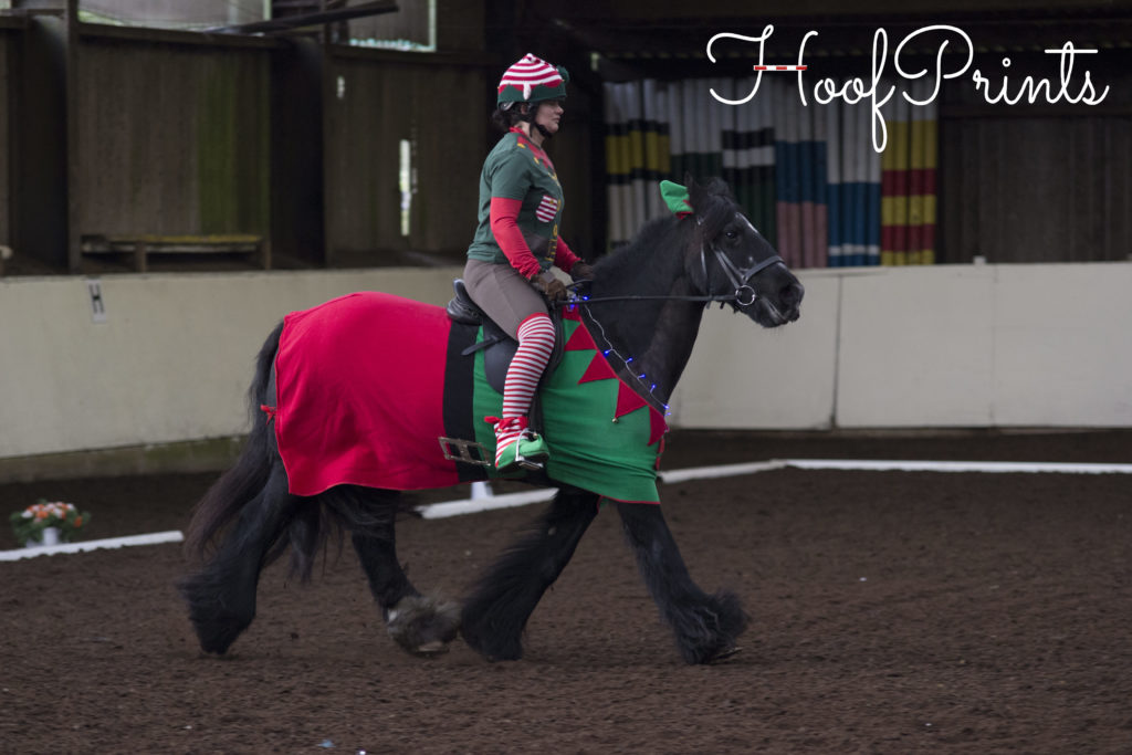 Tinsel Turnout Dressage