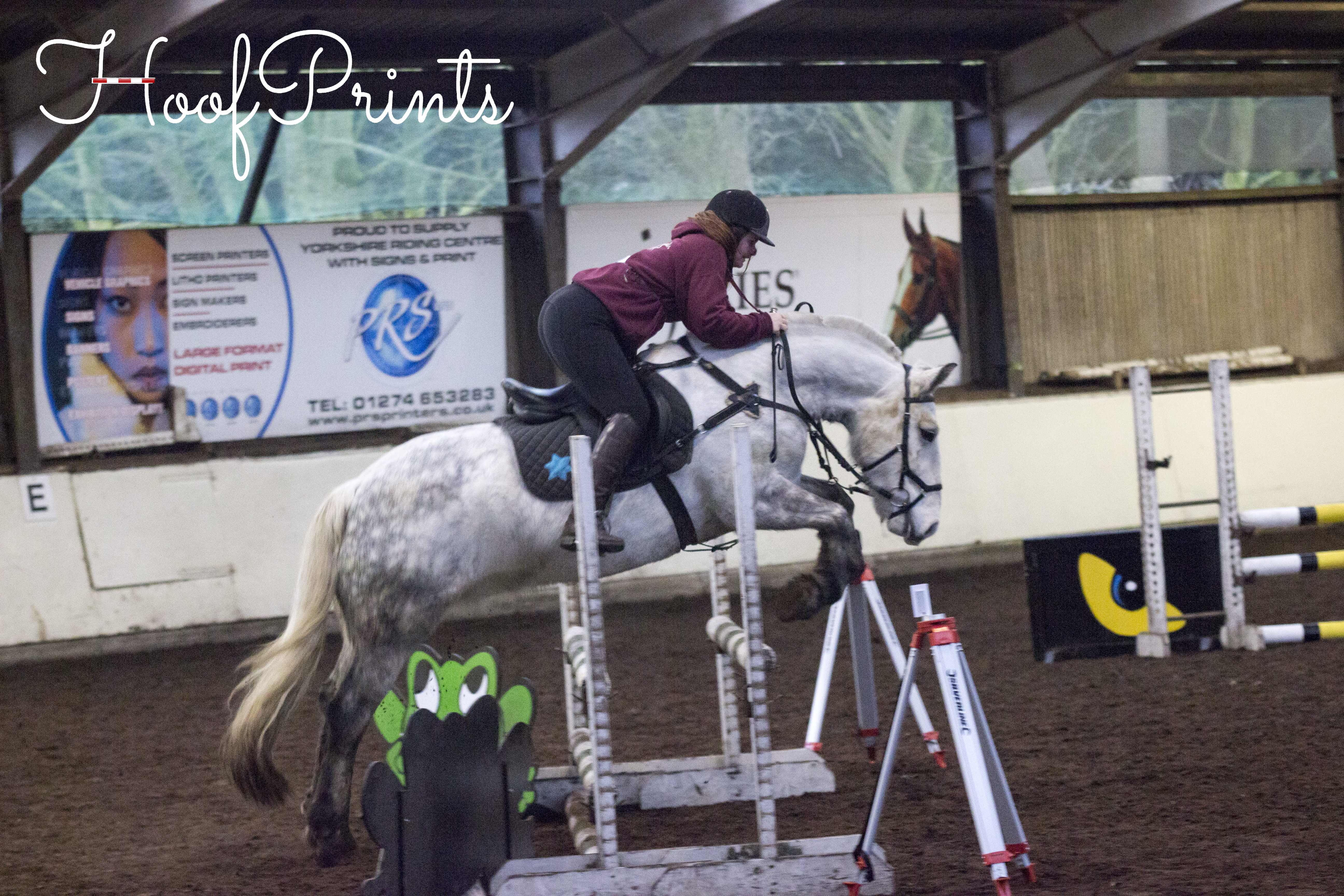 Brimham February Show Jumping 1
